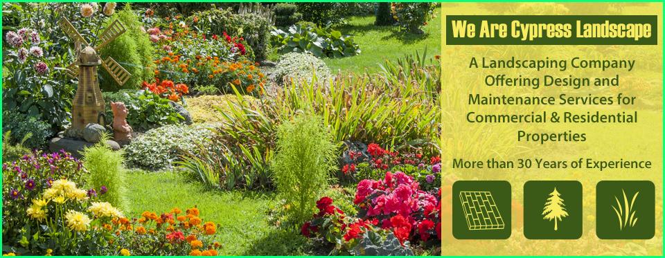 Landscape Maintenance Design Lawn Care Service Westport Ct